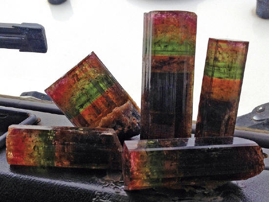 Group of multicolored liddicoatite crystals photographed on the front of the car right after they were collected in the mine. F. Pezzotta photo.