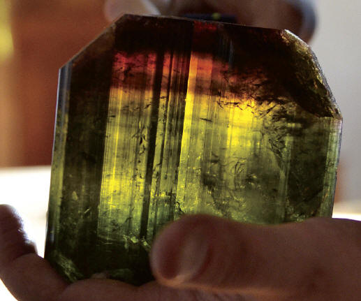 One of the big multi-color liddicoatite crystals, 11.4 cm in length. M. Oleszczuk collection. J. Gajowniczek photo.