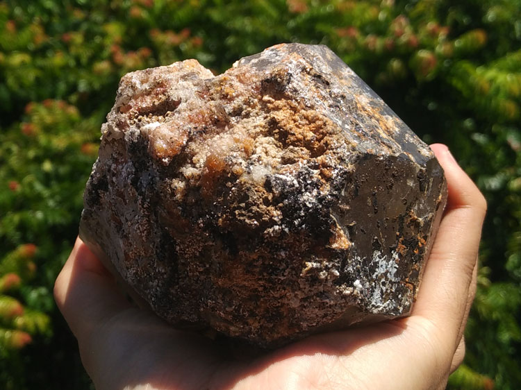 A large smoky Quartz and manganese aluminum garnet mineral crystal gem stone ore samples,Garnet,Quartz