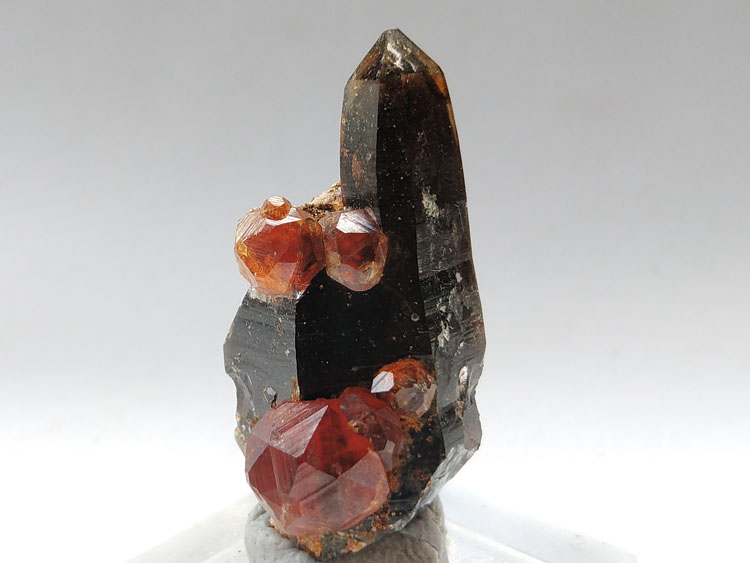 Super large Fanta crystal stone manganese aluminum Spessartite garnet and Smoky Quartz gem stone spe,Garnet,Quartz