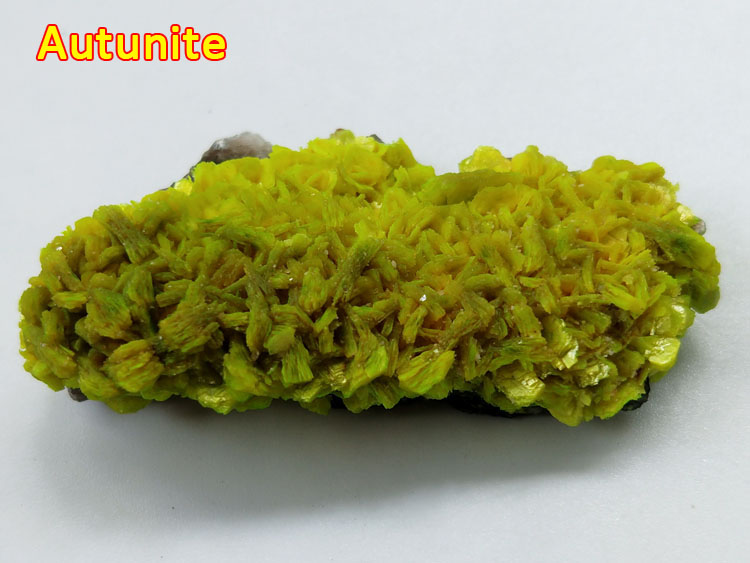 Autunite stone mineral samples Chinese rare ore ,Autunite